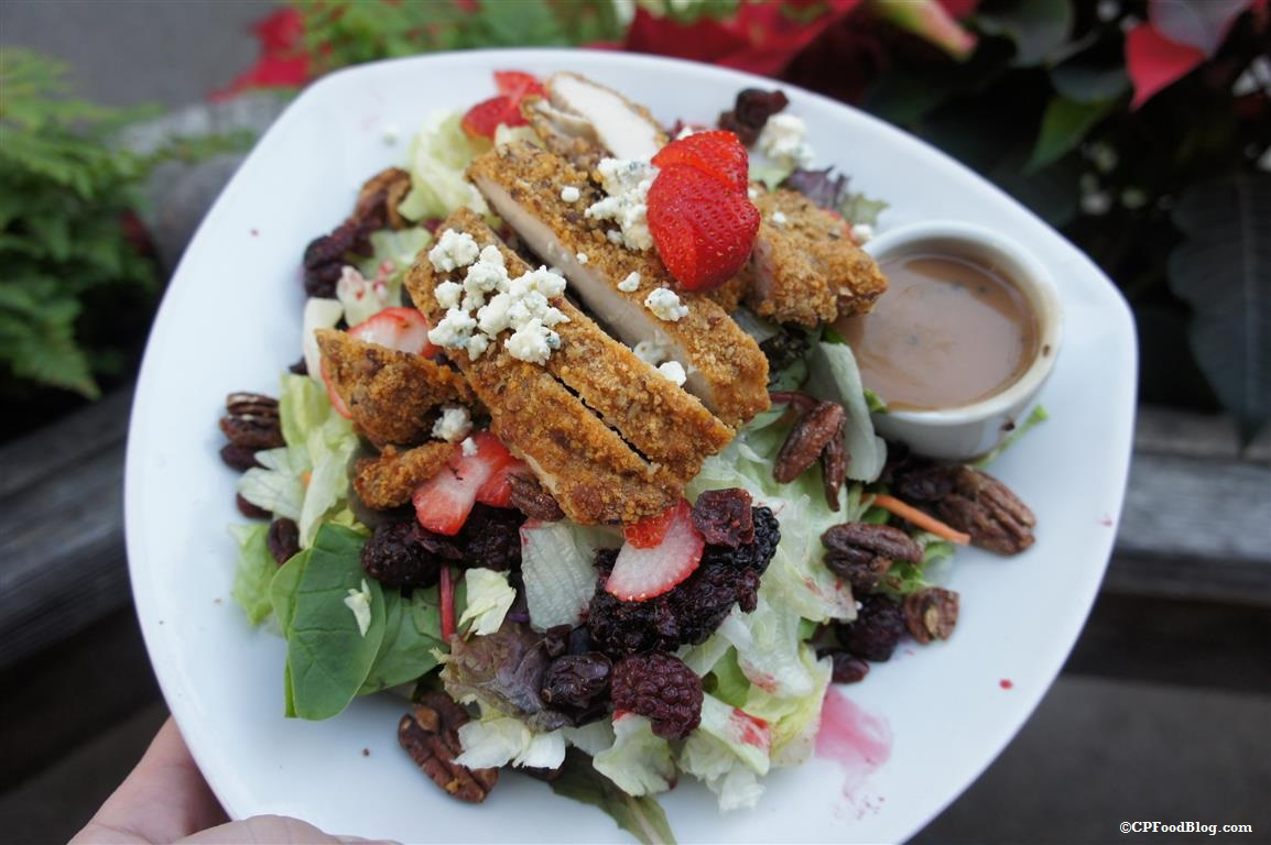 141125 Knott's Ghost Town Grill Pecan Chicken Salad with Boysenberries