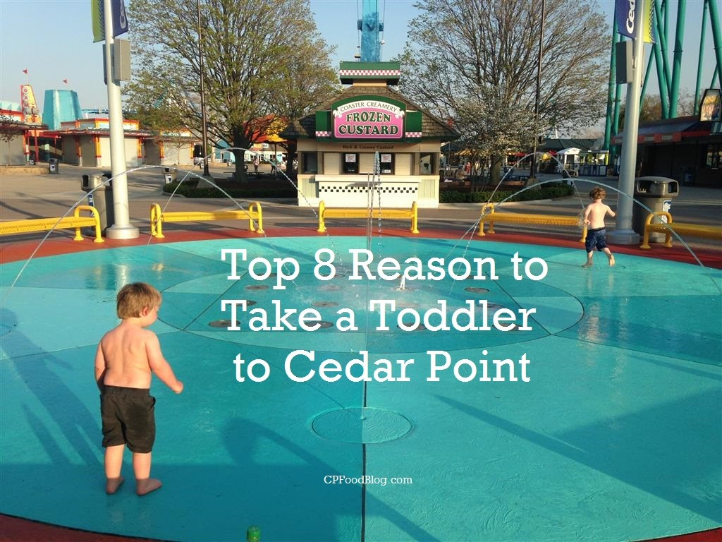 Top 8 Reason to Take a Toddler to Cedar Point
