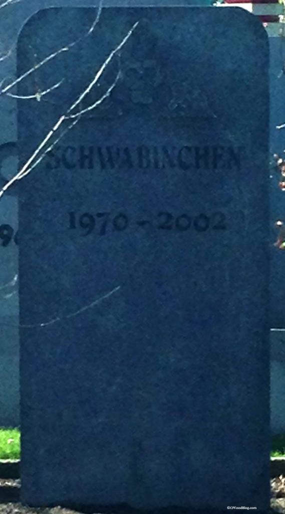 151101 Cedar Point Ride Graveyard (1)