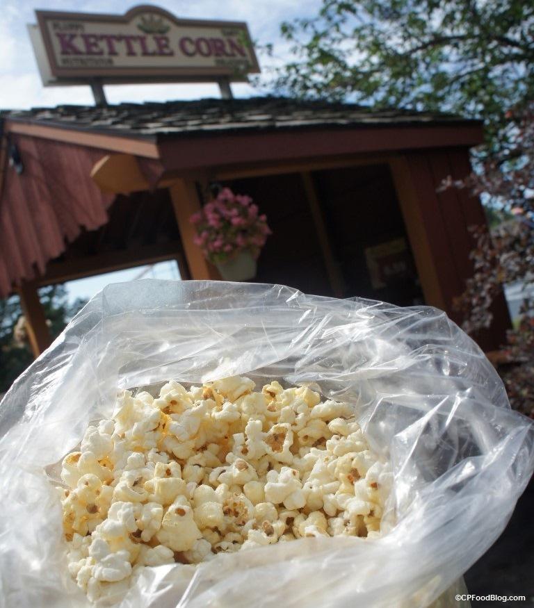 160721 Michigan's Adventure Kettle Corn Bag